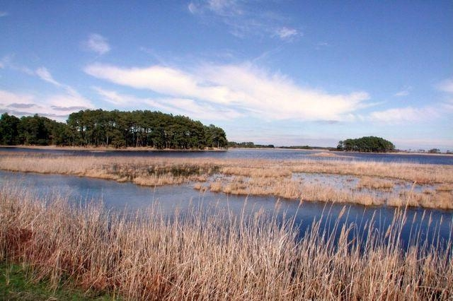 Assateague Pond