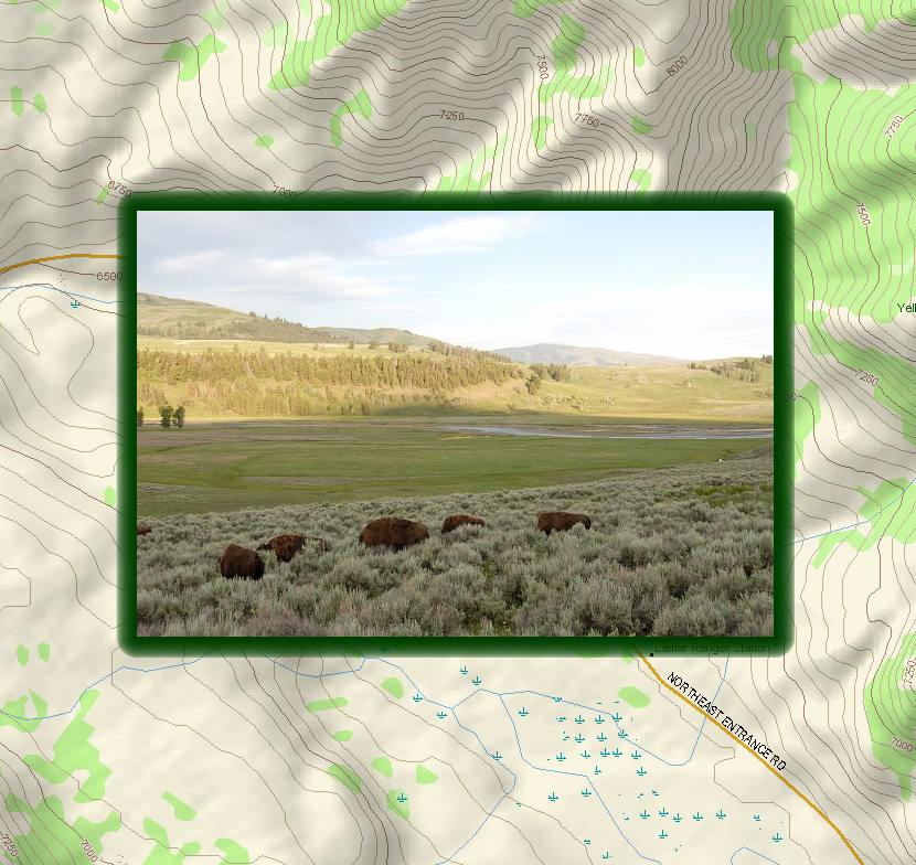Yellowstone Map - Lamar Valley a